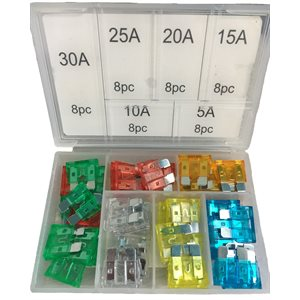 48pc Fuse Assortment