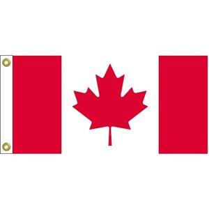 "DRAPEAU CANADA 9""X18"""